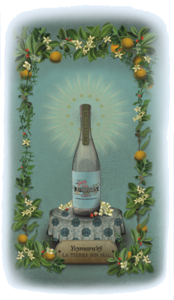 Príncipe de los Apóstoles Mate Gin mit den verwendeten Botanicals